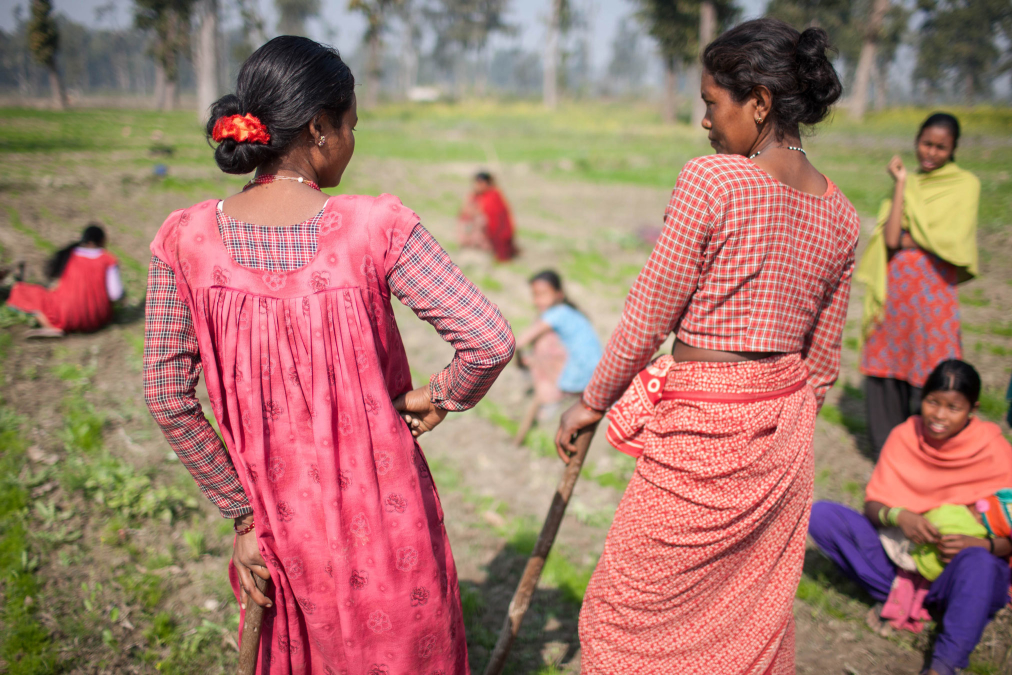 Women working communal fields, Tikapur, Nepal.